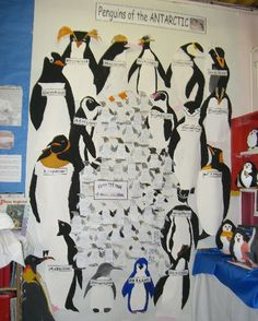 Penguins of the Antarctic classroom display photo - Photo gallery - SparkleBox