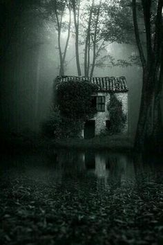 Isolated, abandoned, creepy cottage deep in the dark forest, shrouded by an eerie mist. Abandoned Mansions, Abandoned Buildings, Abandoned Places, Spooky Places, Haunted Places, Creation Art, Cottage In The Woods, Old Cottage, Dark Places