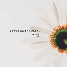 Focus on the good. Have a good weekend everyone! #positivitynote #wisdom