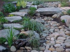 dry creek bed, wouldn't that be awesome in the  front yard instead of a boring old lawn?!