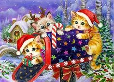 1000 images about cat xmas on pinterest christmas cats for Papier peint pour ordinateur gratuit
