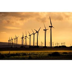 Financing infrastructure and energy projects