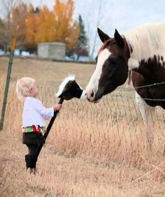 Country Living ~ Horsie Kisses
