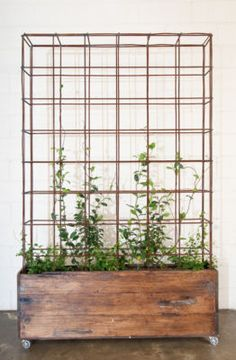 planters- this would be beautiful with climbing flowers or great for veggies that need vines to spread