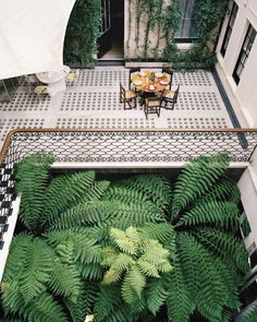 An Inside Look at Maja Hoffmann's London Home by India Mahdavi - Architectural Digest Tropical Garden Design, Small Garden Design, Tropical Houses, Soho, Outdoor Projects, Outdoor Decor, Outdoor Dining, Outdoor Spaces, Inside Plants