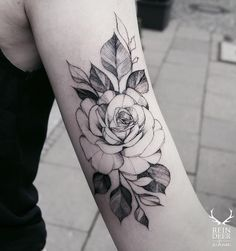 Black Rose Tattoo More