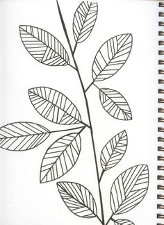 Herb Sprig Black And White Drawing