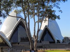 Sydney Opera with trees.