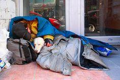 O amor mais sincero: moradores de rua com seus cães são prova de que os animais…