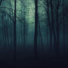creepy trees | Creepy Trees iPad Un-Official Stock Wallpaper #54509