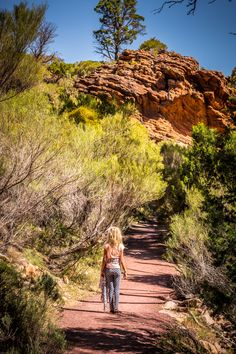 Wangarra Lookout is a great hike to do with kids in Wilpena Pound. The Flinders Ranges National Park is one of the best places to visit in Australia. It has plenty of great hikes for kids. Click to read more about this beautiful region to visit in South Australia.