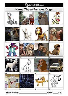 Who let the dogs out? Or more accurately, what are these dogs names? A fun trivia round for anyone that's seen a TV show or movie with a dog (everyone). Quizzes And Answers, Pub Quizzes, Quiz With Answers, Free Pub Quiz, Picses Facts, Family Quiz, Emoji Quiz, Christmas Quiz