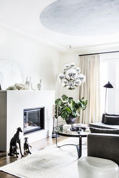 Bright living space with a fireplace, a gray sofa, and a large indoor plant