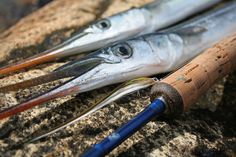 Tolle Hornhechtfliege: Flatwing Tobi | Great fly for garfish: Flatwing Tobi