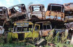 Tchernobyl - Aujourd'hui la nature a repris ses droits, et l'urbanisme et l'architecture moderne sont progressivement effacés au profit des plantes sauvages.