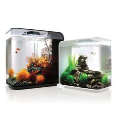 Biorb Flow Aquarium - Frontgate (REAAAAALY WANT FOR SHRIMP AND MARIMO MOSS BALLS)