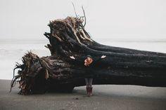 The Hoh Rain Forest - Jordan Voth   Seattle Wedding & Portrait Photographer