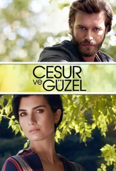 33 Best Turkish Series with english subtitles, icerde inside