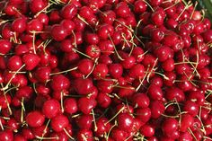 An poster sized print, approx (other products available) - Cherries, Styria, Austria, Europe - Image supplied by Fine Art Storehouse - poster sized print mm) made in Australia Artwork Prints, Poster Size Prints, Fine Art Prints, Framed Prints, Canvas Prints, Puzzles, Europe Photos, Stone Fruit, Travel Photographer