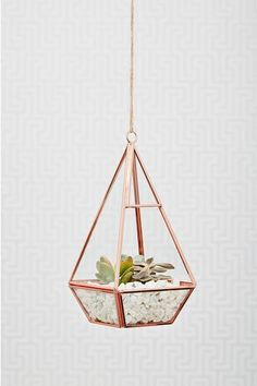 Women's Accessories - This rose gold terrarium is stunning. A wonderful geometric shape and a great way to not only bring plants into your home, but be bang on trend with this geometric shape and rose gold colour. Rose Gold Rooms, Rose Gold Decor, Rose Gold Bedroom Accessories, Copper Accessories, Gold Terrarium, Succulent Terrarium, Hanging Terrarium, Terrariums, Gold Planter