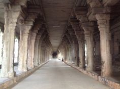 Pillars of Lord Shiva temple , Tirunelveli. Picture by publisher of www.mohanspage.com