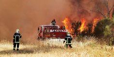 Gironde : violent incendie de forêt à Saint-Jean-d'Illac (33), juillet 2015.