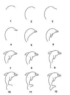 Image result for how to draw a dolphin