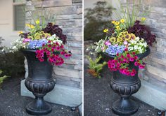 How To: Create a Container Planting