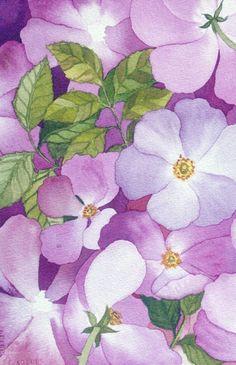 Briar Rose I original watercolor
