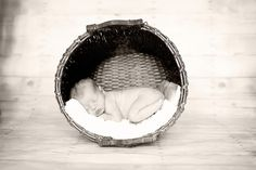 I want to do this for a newborn photoshoot!
