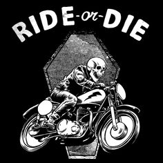 Motorcycles / Graphic Design