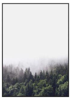 Forest poster, stilren natur affisch i färg med motiv av en skog i dimma
