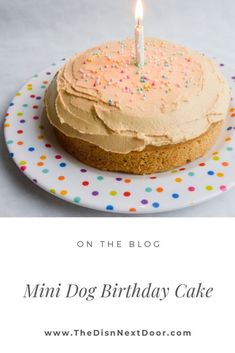 This Mini Dog Birthday Cake with peanut butter and banana is so easy to make and sooo worth watching your dog's excitement as you make it. Dog Birthday Cake Source by thedishnextdoor The post Dog Birthday Cake appeared first on Welch Puppies. Dog Cake Recipes, Dog Biscuit Recipes, Dog Treat Recipes, Dog Food Recipes, Easy Dog Cake Recipe, Dog Birthday Cake Recipe Peanut Butter, Dog Cake Frosting Recipe, Cake Dog, Puppy Cake