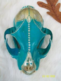 HUGE SALE - Collectible Hand Painted OOAK  - Fully Intact - Bobcat Skull - Native American