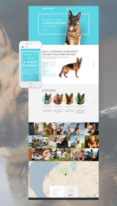 layout for kylo site Dog Responsive Website Template. Additional features, comprehensive documentation and stock photos are included.
