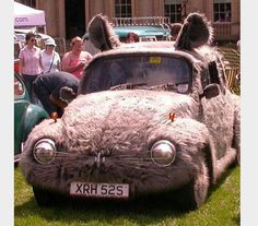 The furry floppy-eared Volkswagen - If I didn't know any better I'd expect this car to hop down the road.