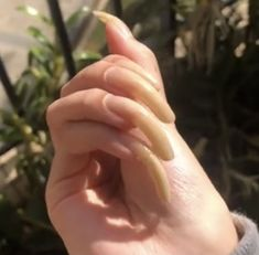 Long Nails, Beautiful