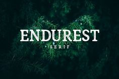 Endurest Font by The Branded Quotes on @creativemarket
