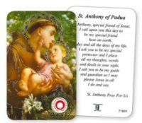 Saint Anthony Prayer Card with Relic. St Anthony Prayer, Saint Christopher, Prayer Cards, St Francis, All Saints, Prayers, All Saints Day, Beans, Saint Francis