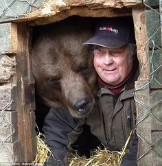 Sulo Karjalainen, the bear tamer man from Finland, Kuusamo! This bear is brown bear (Ursus arctos) His bear has an art exhibition in Helsinki in Jan. Love Bear, Bear Men, All Gods Creatures, Beautiful Creatures, Animal Kingdom, Polar Bear, The Great Outdoors, Cute Animals, Dog Cat