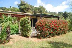 Affitto vacanza CAPOLIVERI Locali 2 | Camere 1 | Bagni 1 Trunks, Villa, Plants, Drift Wood, Flora, Fork, Plant, Villas