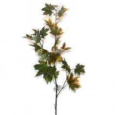 This artificial maple branch/spray has green and light brown leaves.  It measures approximately 90cm tall (50cm leaves, 40cm bare stem) ukgd.co.uk