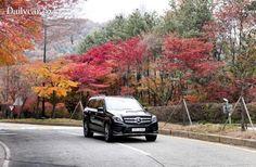 [시승기] SUV계의 S클래스 표방하는..GLS 350 4MATIC | 뉴스/커뮤니티 : 다나와 자동차
