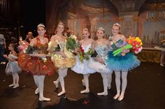 Utah Artists School of Ballet Parents