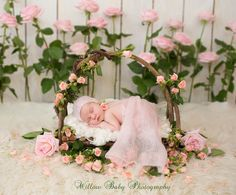 Branch Bed Prop Twig Bed Prop Bed Photo Prop by MrAndMrsAndCo