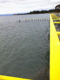 Saltwater Baths at full tide, Motueka NZ