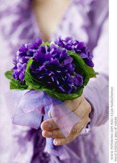 exquisitely violet