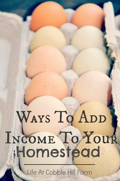 Life At Cobble Hill Farm: 25 Ways To Make Extra Money On The Homestead