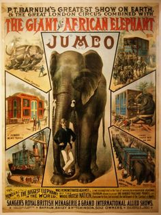 15 September Jumbo the awe- and synonym-inspiring Elephant died at the age of about 24 during a train accident while on tour with P. Barnum's show in St. Barnum Circus, Pt Barnum, Circus Circus, Circus Party, Jumbo The Elephant, Cirque Vintage, Vintage Circus Posters, Biggest Elephant, African Elephant