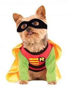 Star Wars Bantha Dog Costume | Pinterest | Tusken raider Pet costumes and Costumes  sc 1 st  Pinterest & Star Wars Bantha Dog Costume | Pinterest | Tusken raider Pet ...